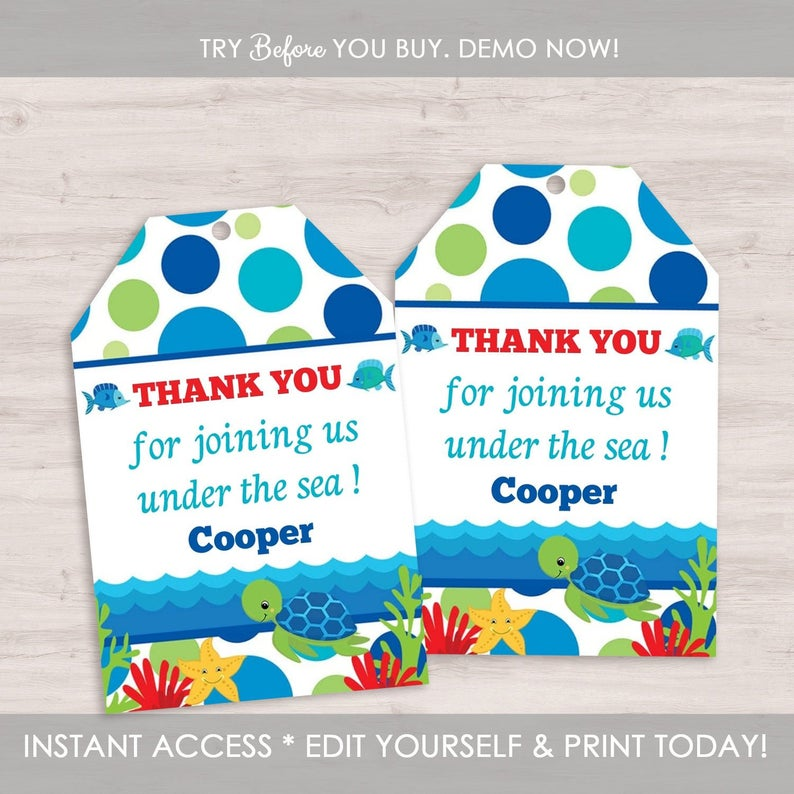 EDITABLE Digital Template INSTANT Download Kids Boy Costume Birthday Decoration Self Edit Costume Party Printable Kit Blue Red Green